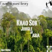 KhaoSok Jungle sound library cover